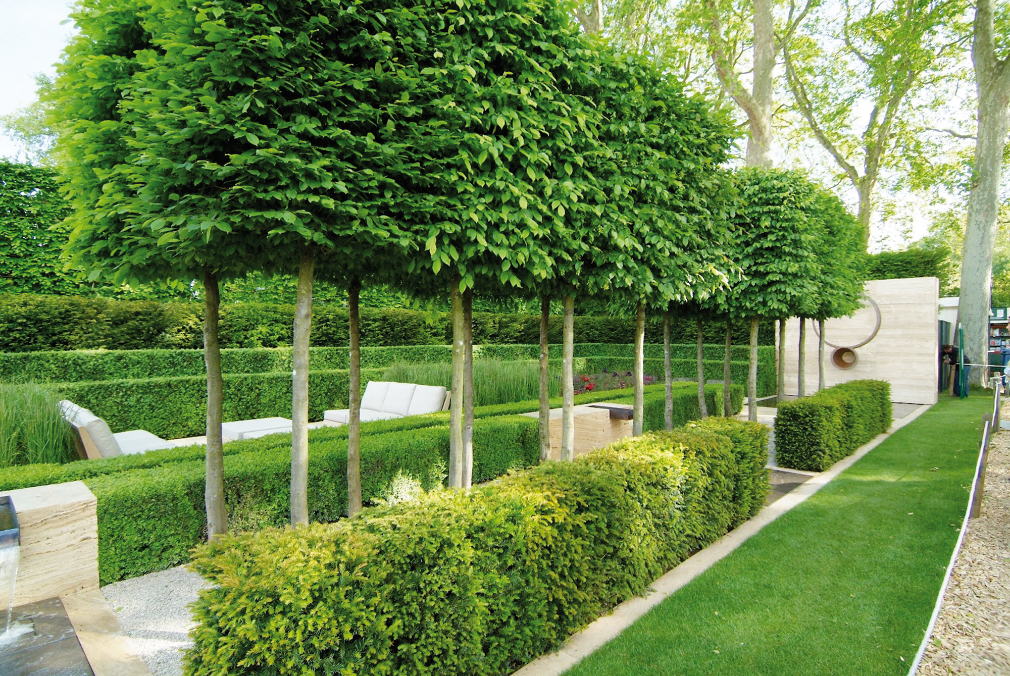 Haagplanten kopen voor uw tuin assortiment hagen tuincentrum de molen - Tuin landscaping fotos ...