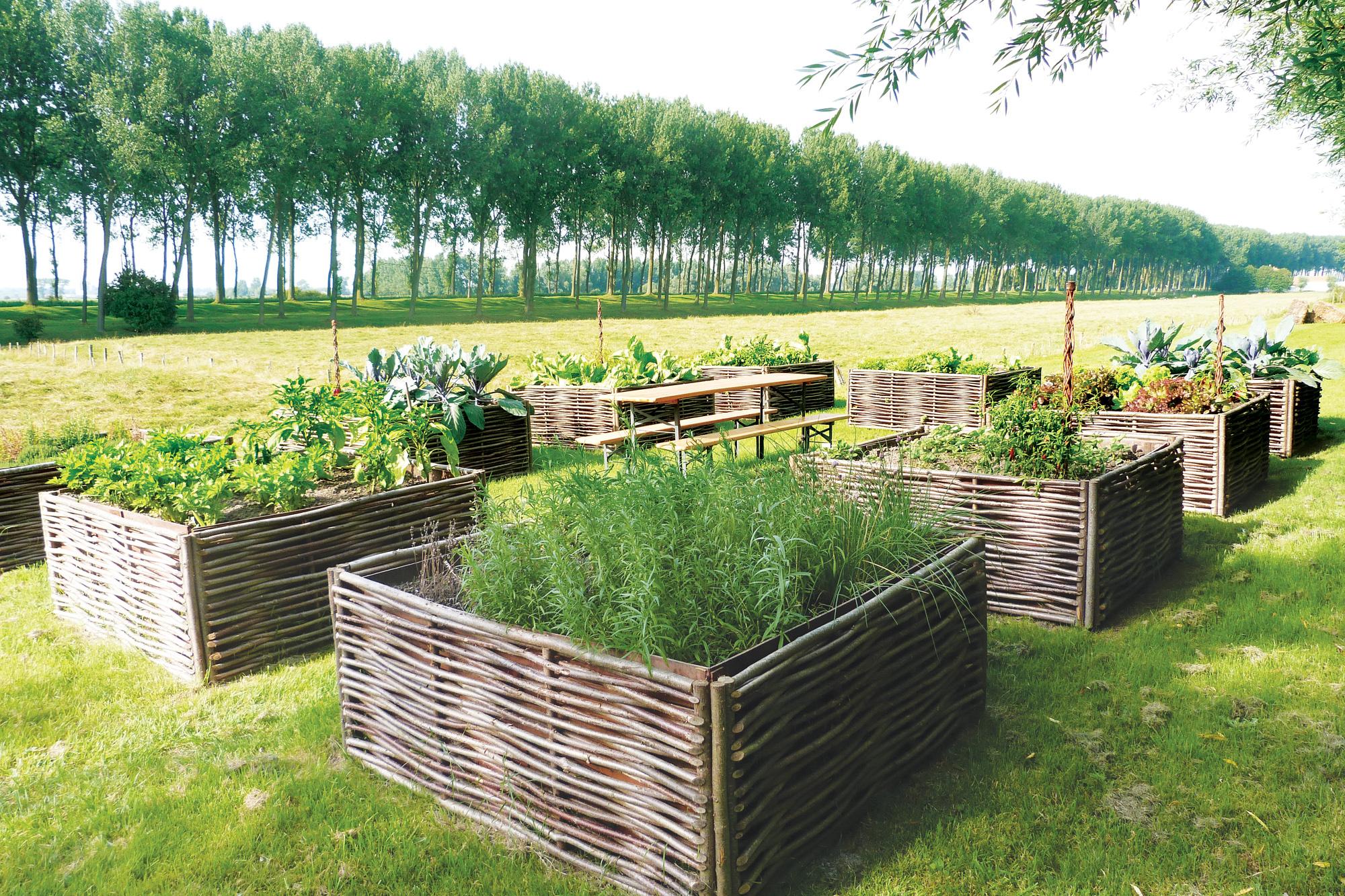 Vierkante Meter Tuin : Moestuinbakken kopen vierkante meter tuin tuincentrum de molen