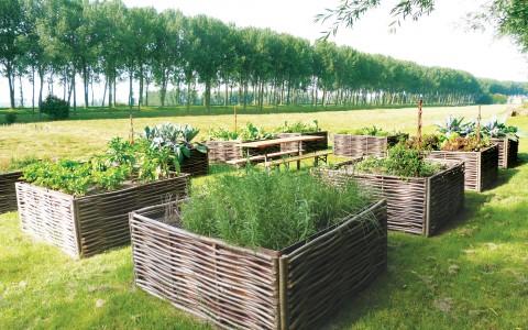 Super Moestuinbakken kopen - Vierkante meter tuin - Tuincentrum De Molen SQ35