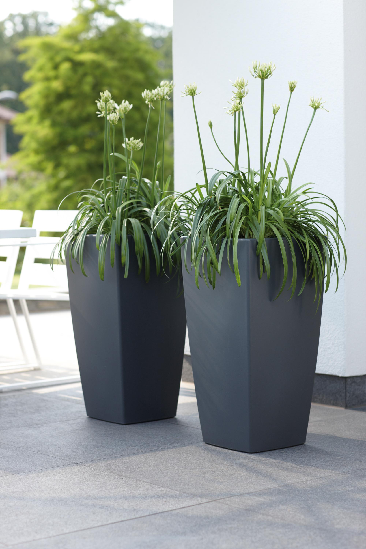 bloembakken kopen bloembakken kopen plantenbakken kopen plantenbakken tuin terraspotten