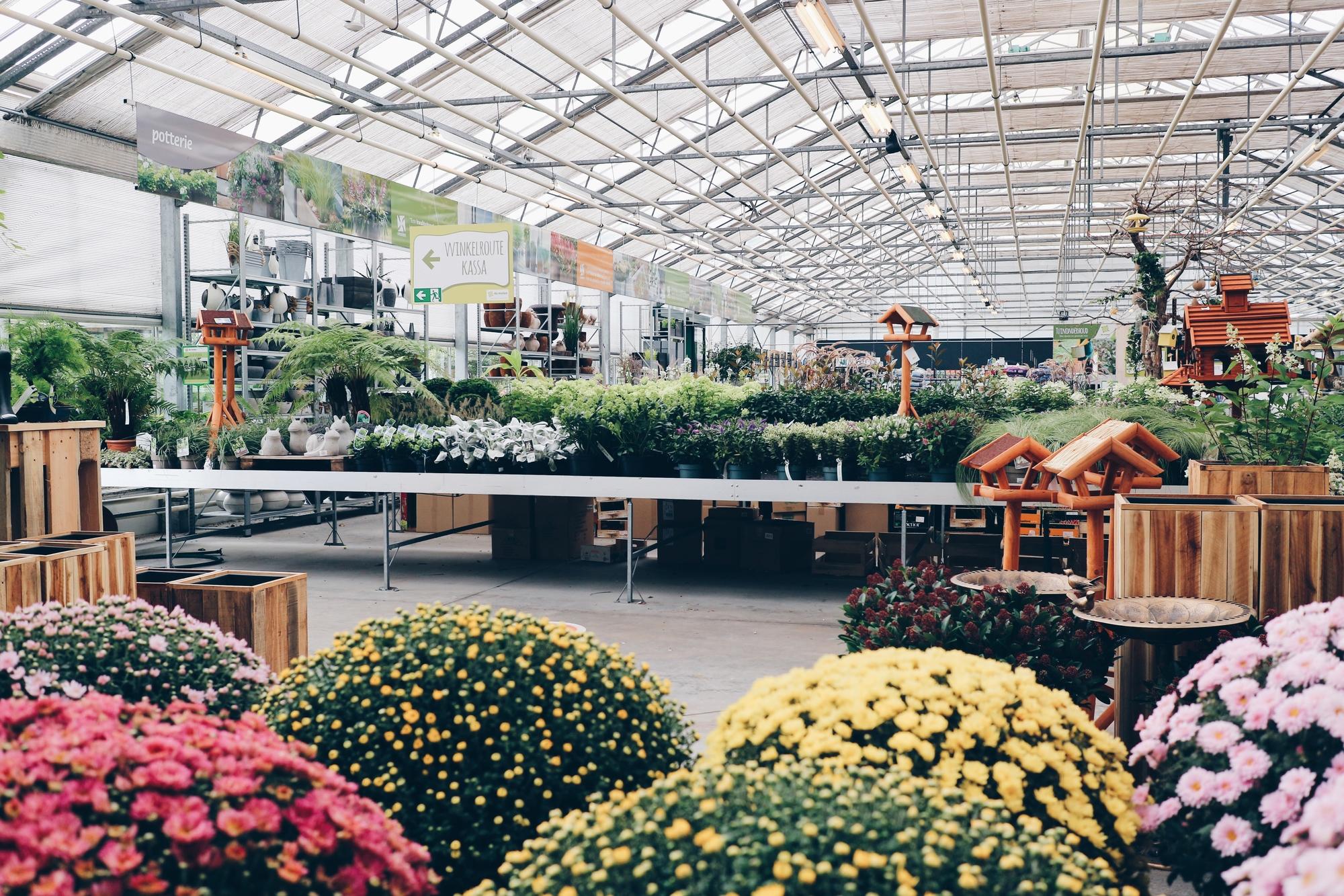 Uitgelezene Tuinplanten kopen - Tuincentrum De Molen RV-93